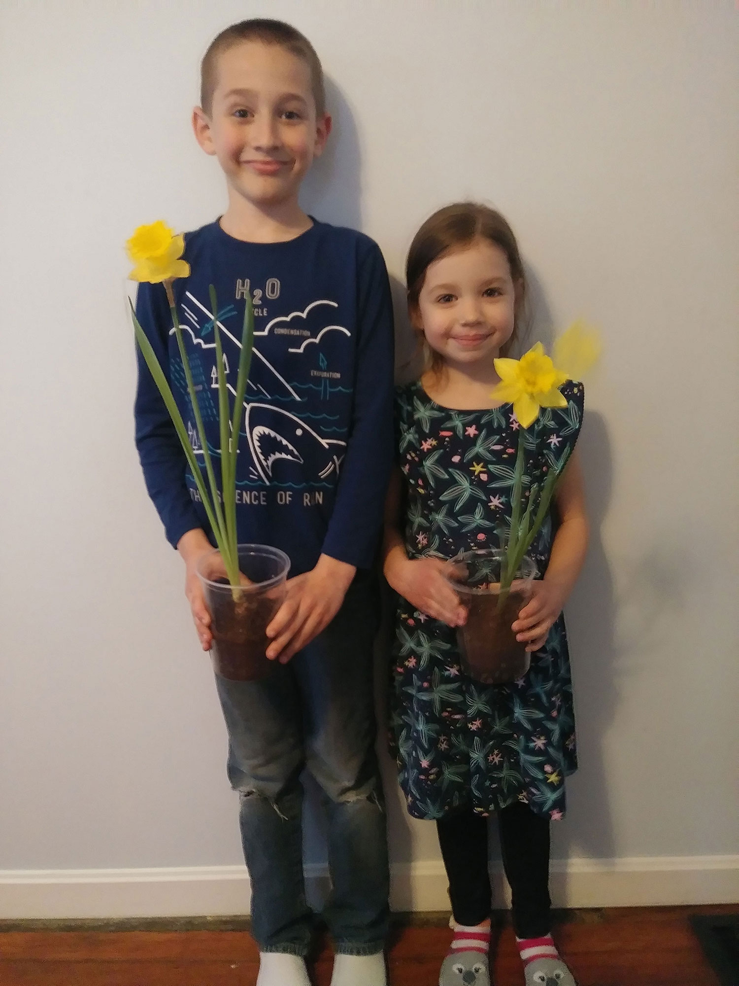 Spring daffodils and Sunday School kids